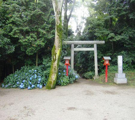 saitama washimiya jinjya 03 20100628_R
