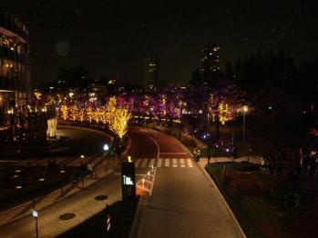 tokyo midtown night light up 20101201 08_R