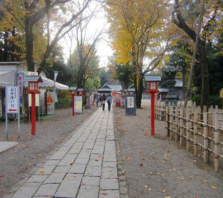 saitama washimiya jinjya 04 20101121_R