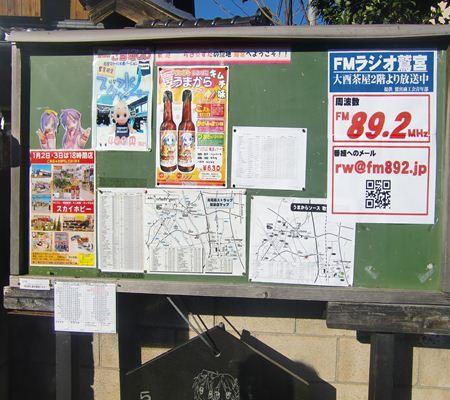 saitama washimiya jinjya 04 20110102_R