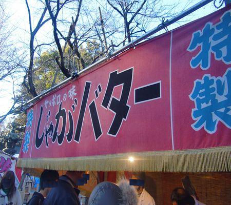 washimiya jinjya08 part02 20110102_R