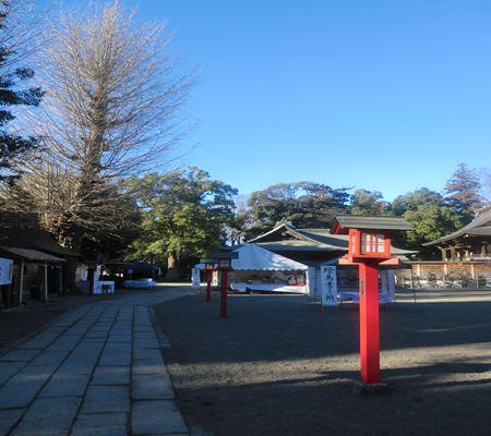 saitama washimiya jinjya 09 20110117_R