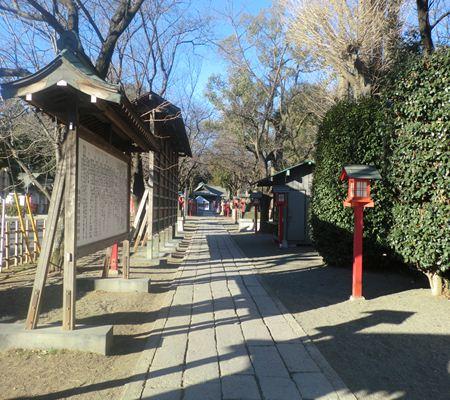 saitama washimiya jinjya 07 20110117_R