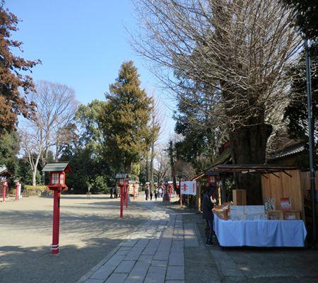 saitama washimiya jinjya 09 20110227_R