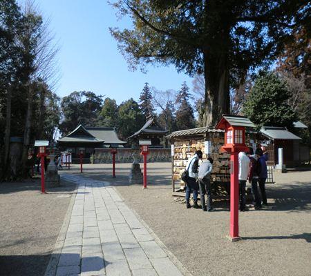 saitama washimiya jinjya 06 20110227_R