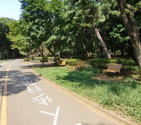 shibuya ku yoyogi park 07 20100823_R