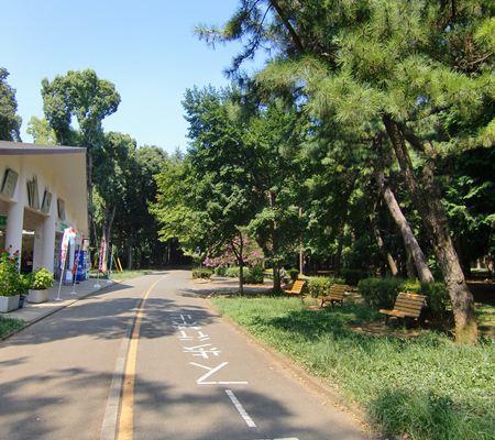 shibuya ku yoyogi park 06 20100823_R