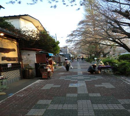 tky kunitachi city13 20110414 a chan butai_R