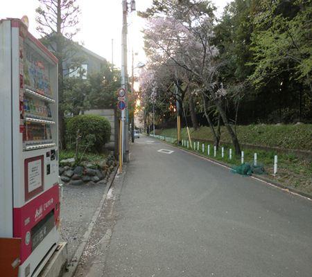 tky kunitachi city06 20110414 a chan butai_R
