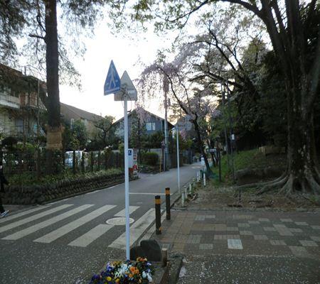 tky kunitachi city03 20110414 a chan butai_R