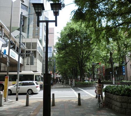kotobukichou1cho kosaten 20110502_R