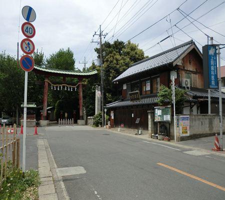 saitama washimiya jinjya 01 20110510_R