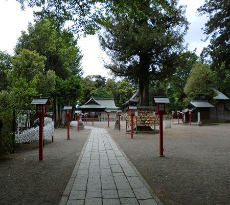 saitama washimiya jinjya 03 20110510_R