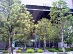 ふくおかフィナンシャルグループ本社ビルの広場