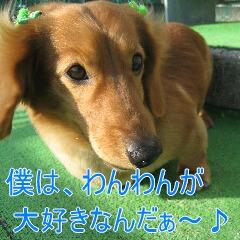 2_20091201180540.jpg