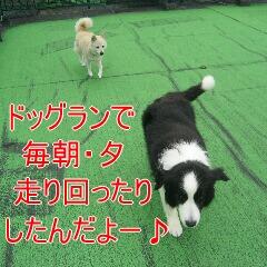 3_20091201182601.jpg