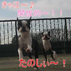 3_20100111192411.jpg