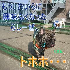 4_20100216184901.jpg