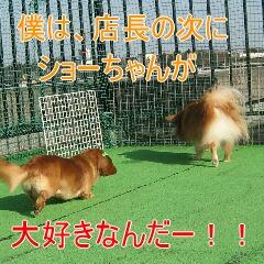 7_20091201180652.jpg