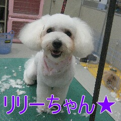 IMG_2480.jpg