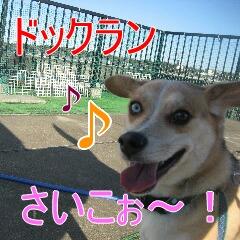 IMG_9393.jpg