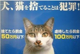 動物虐待・遺棄防止ポスター
