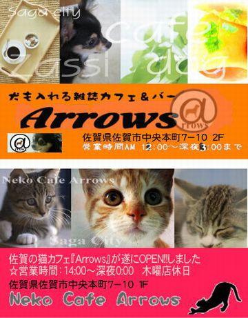 犬カフェ&猫カフェAroows