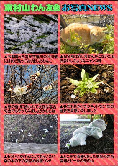 東村山わん友会お写真NEWS-16