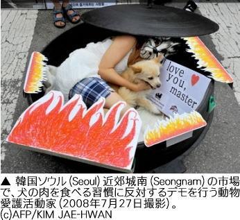 ソウルの犬食反対パフォーマンス