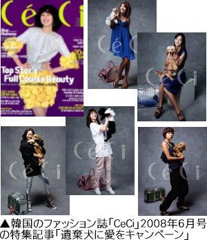「CeCi」誌の遺棄犬に愛をキャンペーン