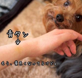 0_20110611084735.jpg