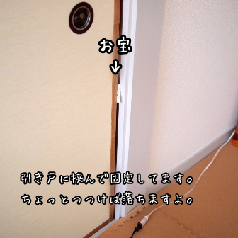 2_20110617164857.jpg