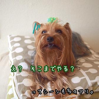 3_20110716120641.jpg