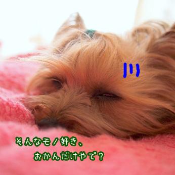 6_20110603173719.jpg