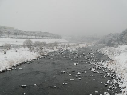 10_DSCN0849_相川橋上流右岸