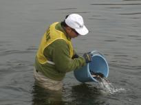 漁協放流1_20120304_DSCN0933