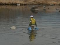 漁協放流3_20120304_DSCN0937
