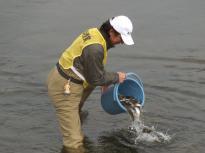 漁協放流4_20120304_DSCN0939