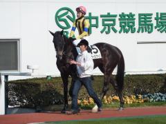 パドック:ホーカーハリケーンと松山騎手