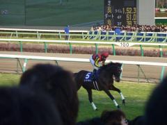 返し馬:ルーラーシップ