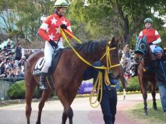 パドック:マーベルに騎乗する北村友一騎手