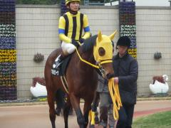 パドック:マルセリーナと安藤勝己騎手
