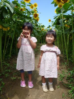 P1010181_convert_20110827140946.jpg