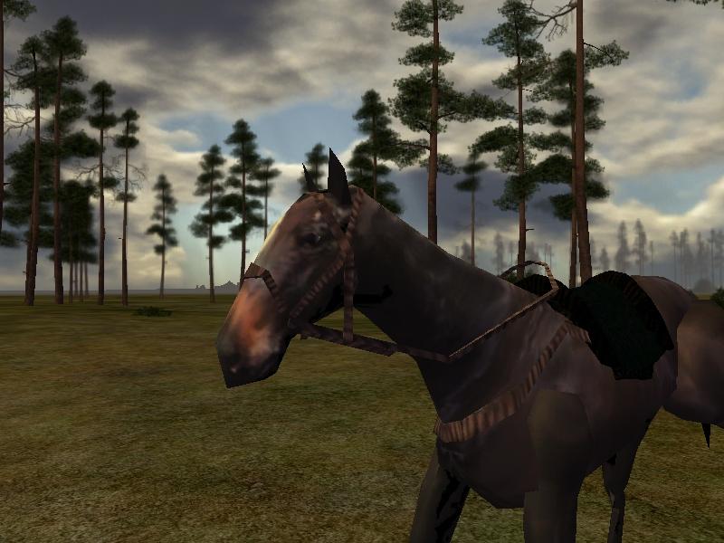 horseSS_3.jpg
