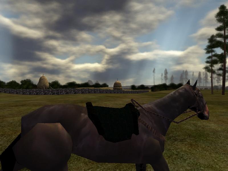 horseSS_4.jpg