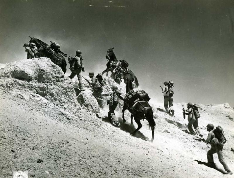 horseclimb.jpg
