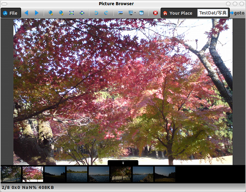 Picture Browser Firefoxアドオン 画像ビューア