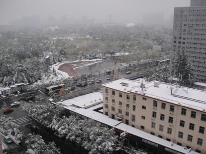 091101_snow(4).jpg