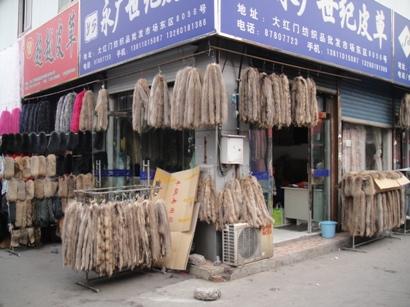 091105_muxiyuan(8).jpg