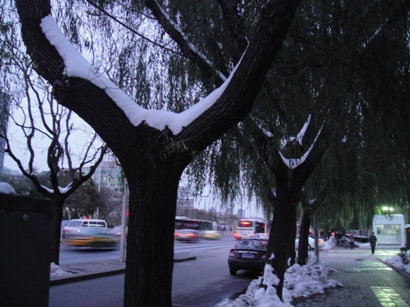 091111_snow(1).jpg